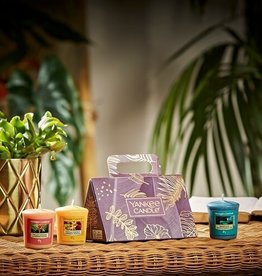 YC The Last Paradise 3 Votives Giftset