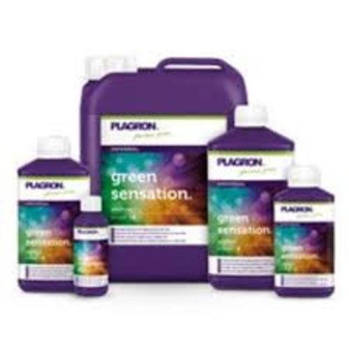 Plagron Green Sensation 100 ml