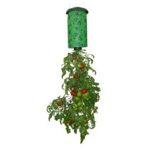 Topsy Turvy. Omgekeerde tomatenplanter