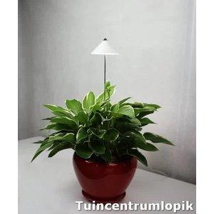 Parus iSun PotLed (WIT) 10 watt