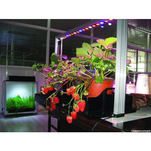Parus M30 PRO Mini-farm kweeklamp