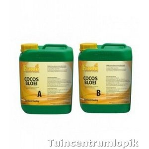 Ferro Coco Bloei  A&B 5 ltr