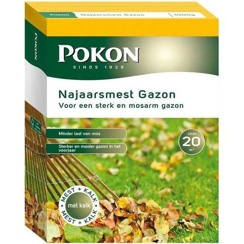 POKON  NAJAARSMEST GAZON 1KG