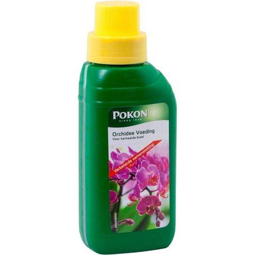 POKON  POKON ORCHIDEE VOEDING 250 ML