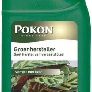 POKON  GROENHERSTELLER 250 ML