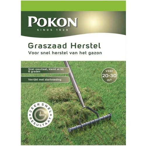 POKON  Graszaad Herstel SOS 500  gram