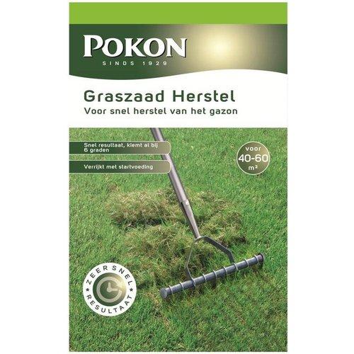 POKON  Graszaad Herstel SOS 1 kg