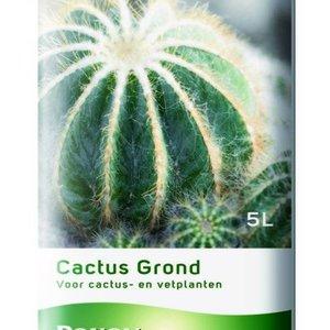 POKON  CACTUS GROND 5 LITER