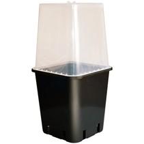 Wilma Uni- Propagator voor 11 liter container
