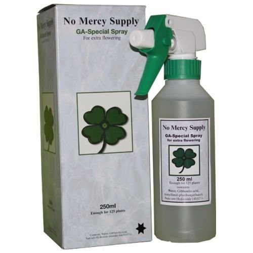 No Mercy Supply GA Special Spray 250 ml