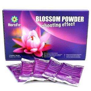 Hortifit Blossom Power  6 Sachet 100 gram