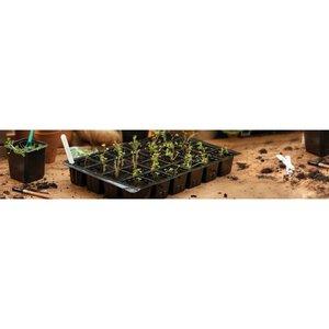 Grow-it 24 Vaks Zaai tray 37x23 5st. (30) 085.30