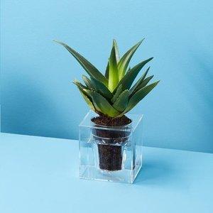 Boskke Cube large - Kunststof bloempot - Transparant