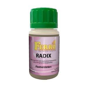 FERRO RADIX 60 ML