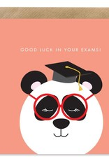 Bold Bunny Bold Bunny Card Good Luck in Your Exams