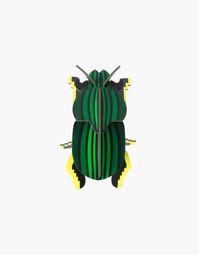 Studioroof Studioroof Little Wonders of Nature Scarab Beetle