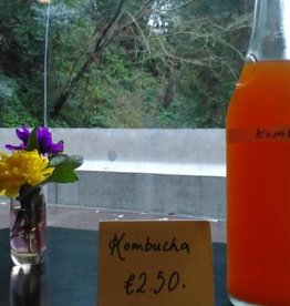 Event Kombucha Workshop - 6 April