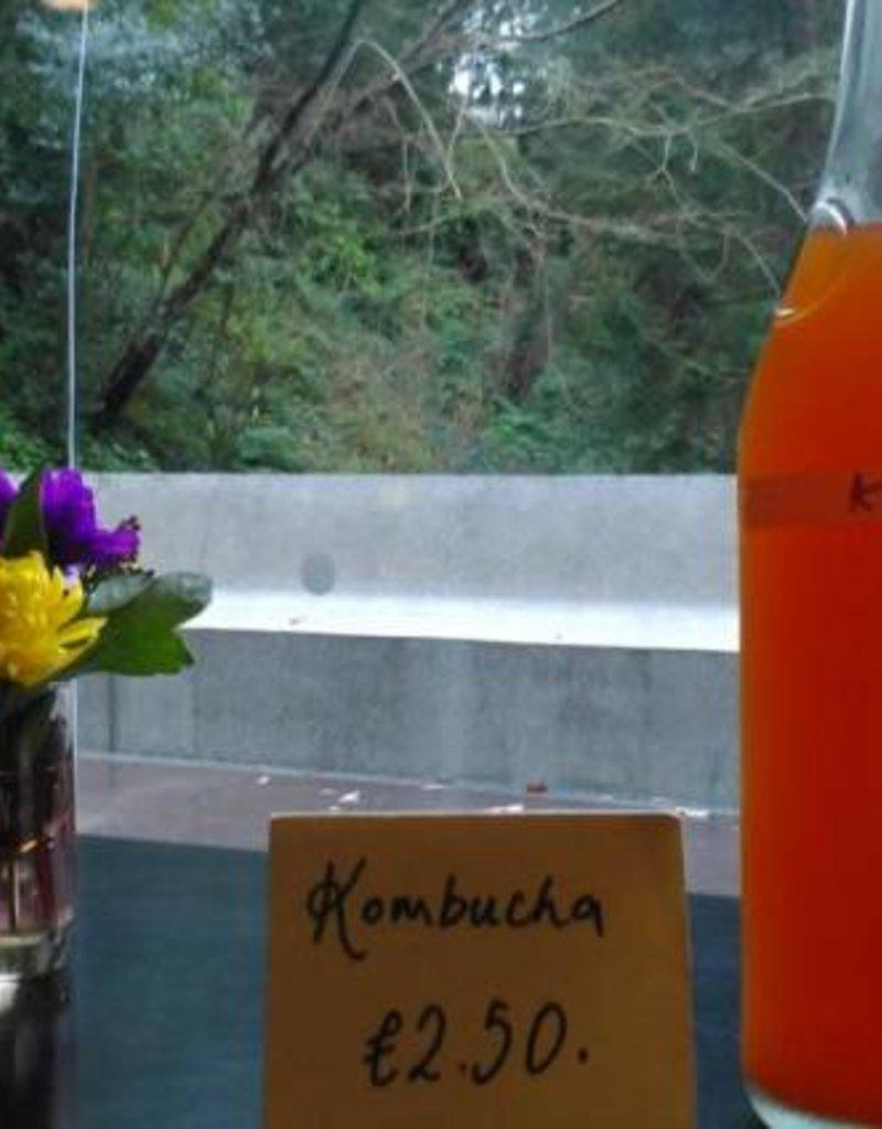 Event Kombucha Workshop - 6 April
