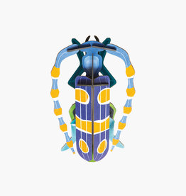 Studioroof Wall Decor Rosalia Beetle (small)