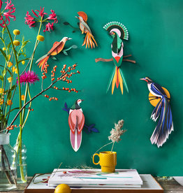Studioroof Studio Roof Paradise Bird Obi Wall Decoration