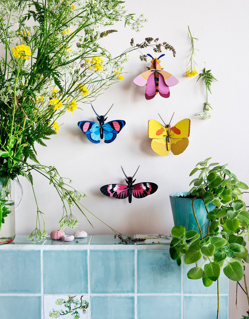 Studioroof Studio Roof Wall Decor Longwing Butterfly small
