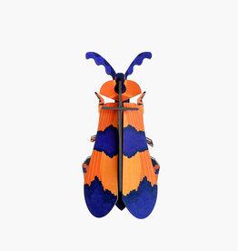 Studioroof Wall Decor Winged Beetle (small)