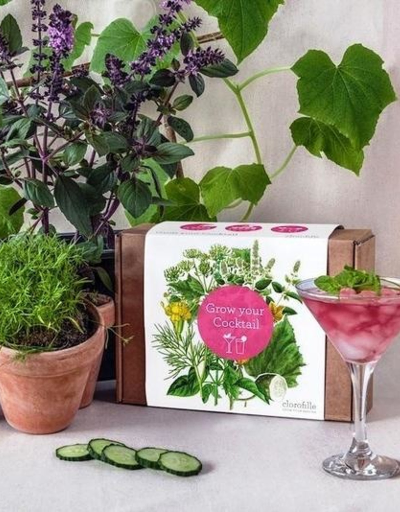 Jiminy Eco Toys Grow Your Own Cocktails!