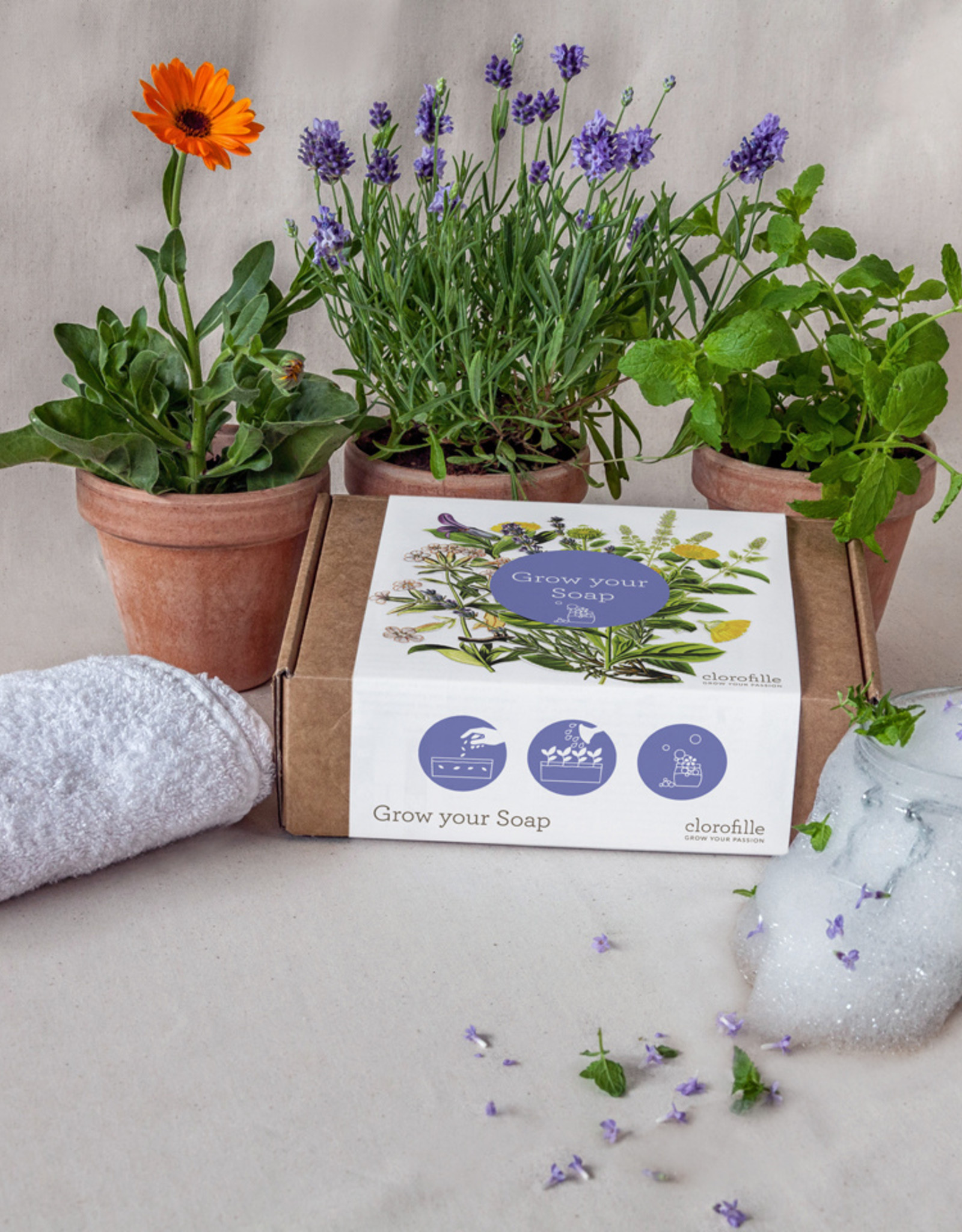 Jiminy Eco Toys Grow your own soap