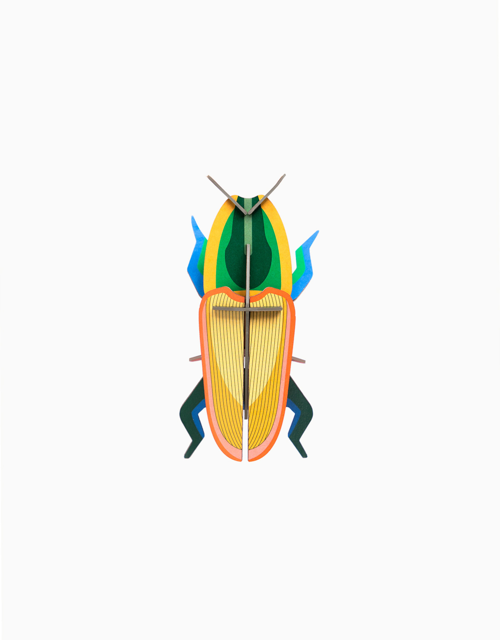Studioroof Wall Decor Madagascar Beetle (small)