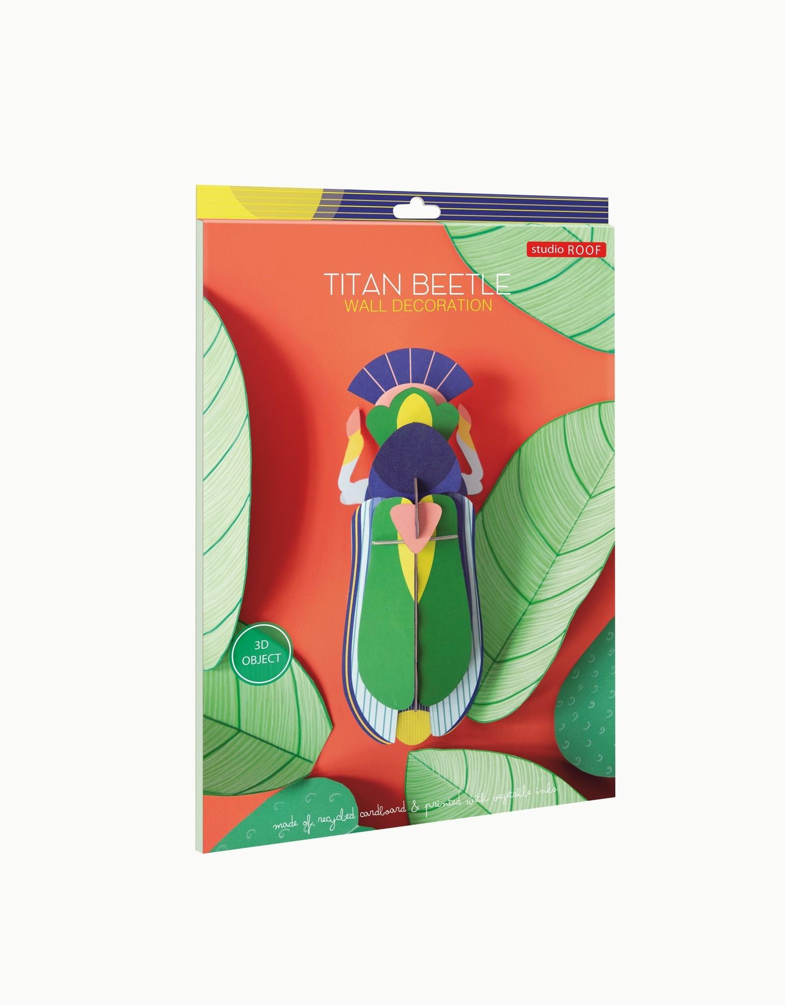 Studioroof Titan Beetle