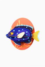 Studioroof Big Fishes- Jewel Damselfish