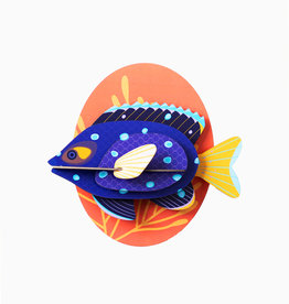 Studioroof Big Fishes- Jewel Damselfish