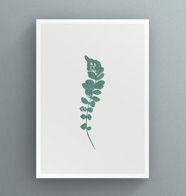 Petal to Petal Confluent Maidenhair Fern - Greeting Card