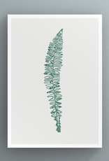 Petal to Petal Atlantic Hybrid Shield-Fern - Greeting Card