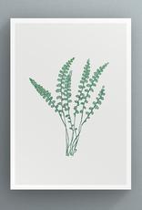 Petal to Petal Rusty-back Fern - Greeting Card