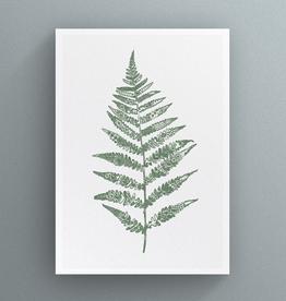 Petal to Petal Lace Fern - Greeting Card