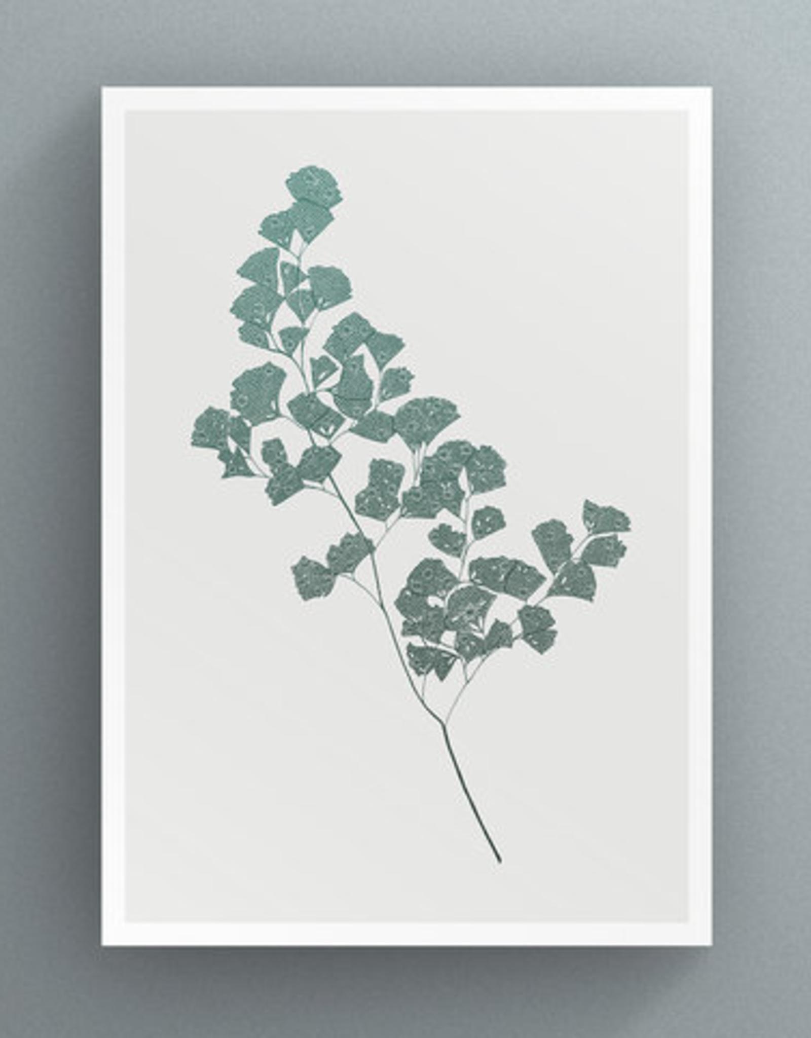 Petal to Petal Maidenhair Fern - Greeting Card