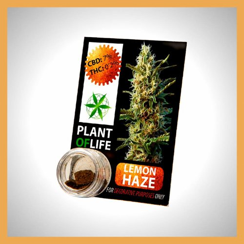 Plant of Life CBD Solid Lemon Haze 3,8%