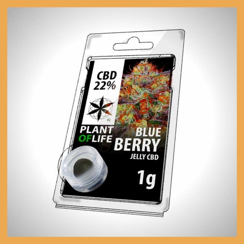 Plant of Life CBD Solid Blueberry 20%