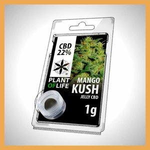 Plant of Life CBD Solid Mango Kush 20%