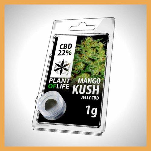CBD Solid Mango Kush 20%