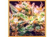 CBD Flower Orange Bud 1g