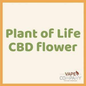 Plant of Life CBD Flower Strawberry 3g