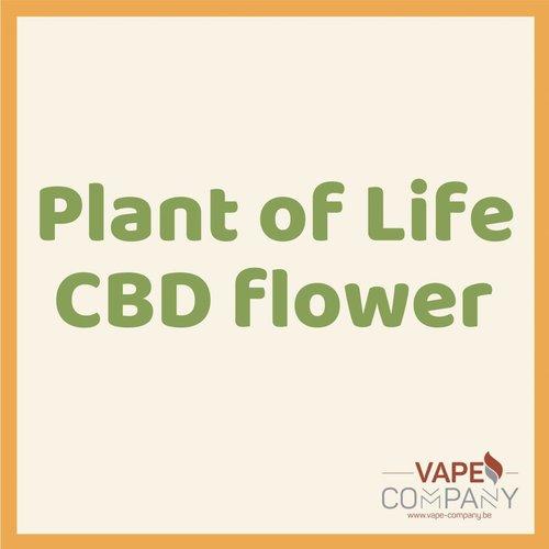 Plant of Life CBD Flower Silver Bud 1.5g