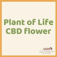Plant of Life CBD Flower Bubblegum 3g