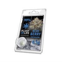 Plan of Life Terpsolator 99% CBD 0.5g Blueberry