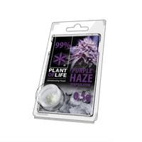 Plan of Life Terpsolator 99% CBD 0.5g Purple Haze