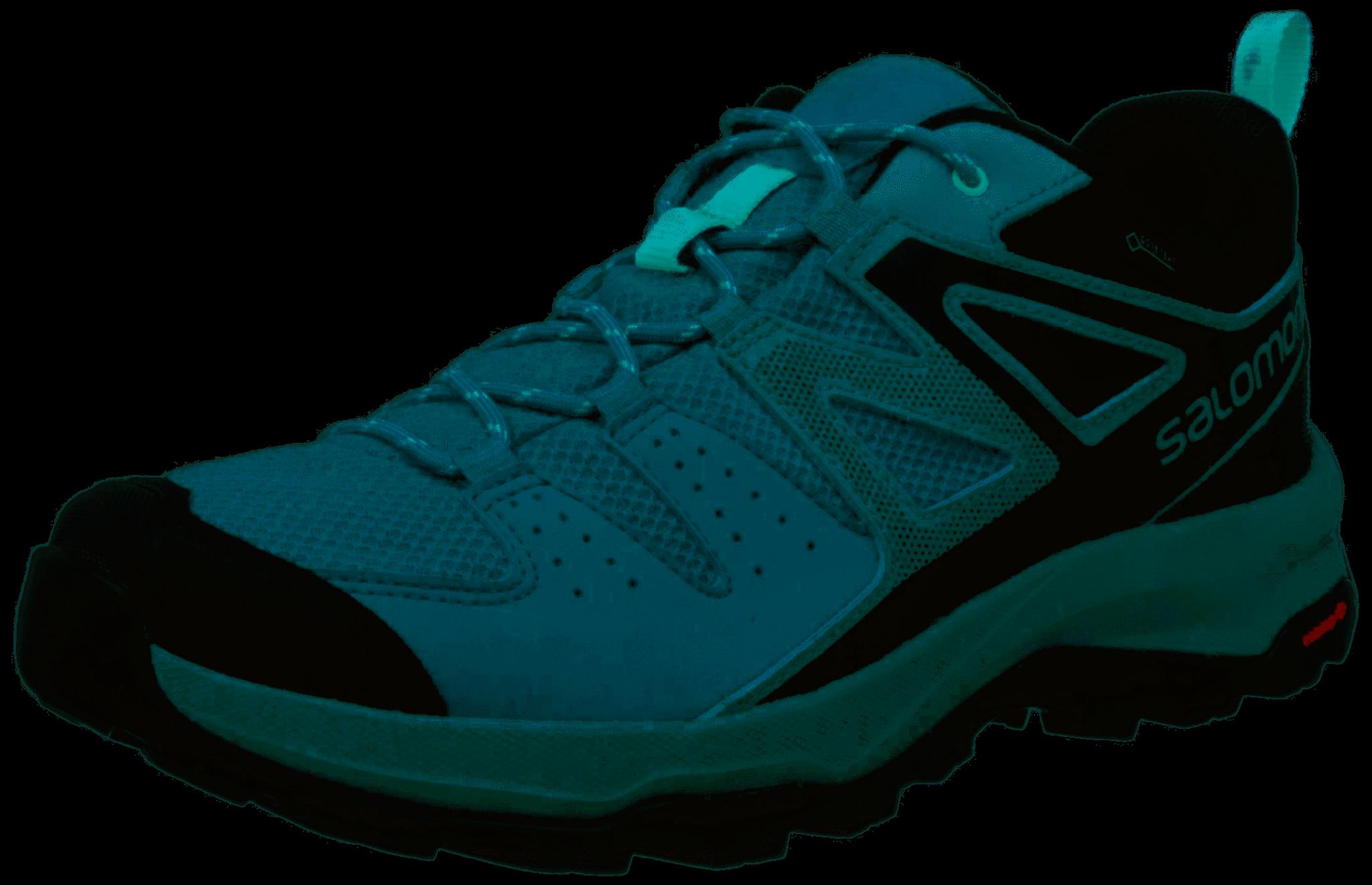 brand new lower price with new release Salomon X Radiant GTX Ladies Walking Shoe (2019)