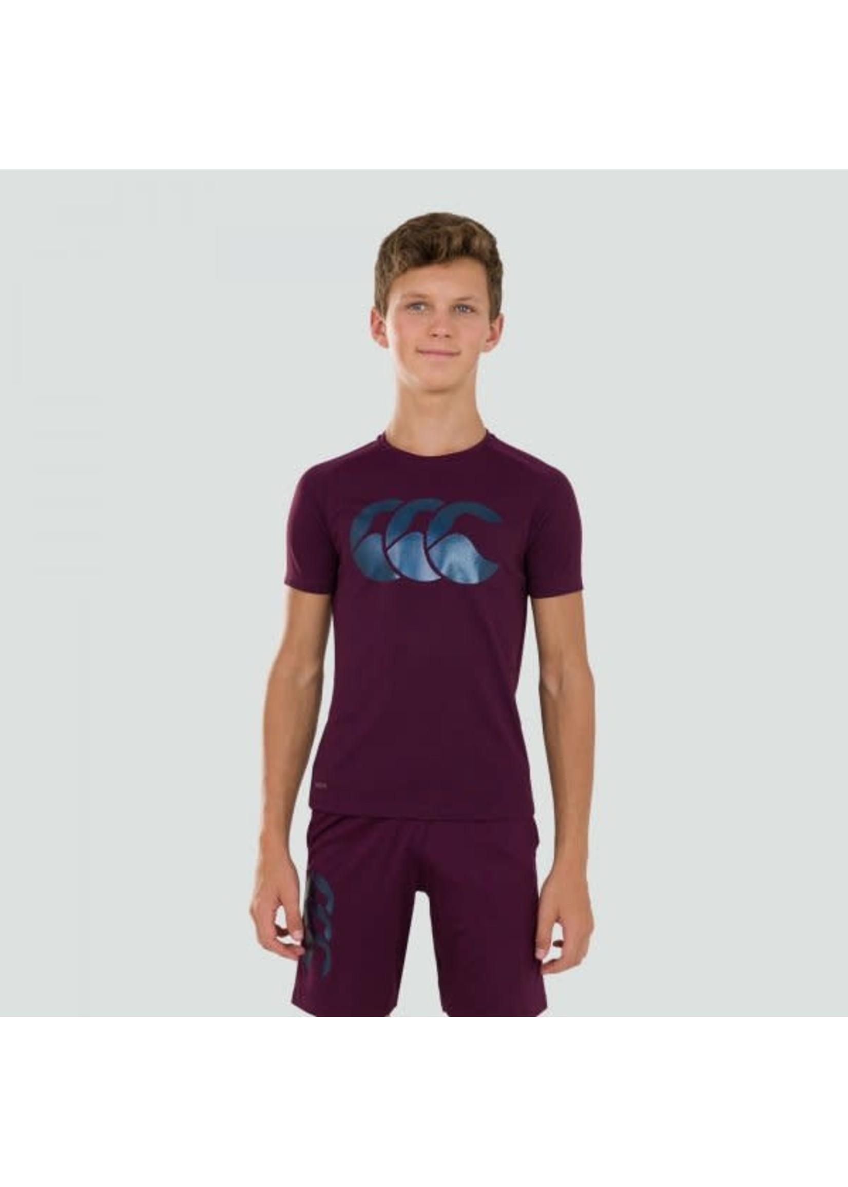Canterbury Canterbury Vapodri Poly Logo Junior Tee -  Potent Purple (2020)