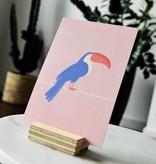 """Roze wenskaart Tropical-birds """"Toekan"""""""